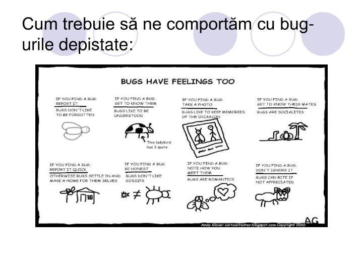 Cum trebuie să ne comportăm cu bug-urile depistate: