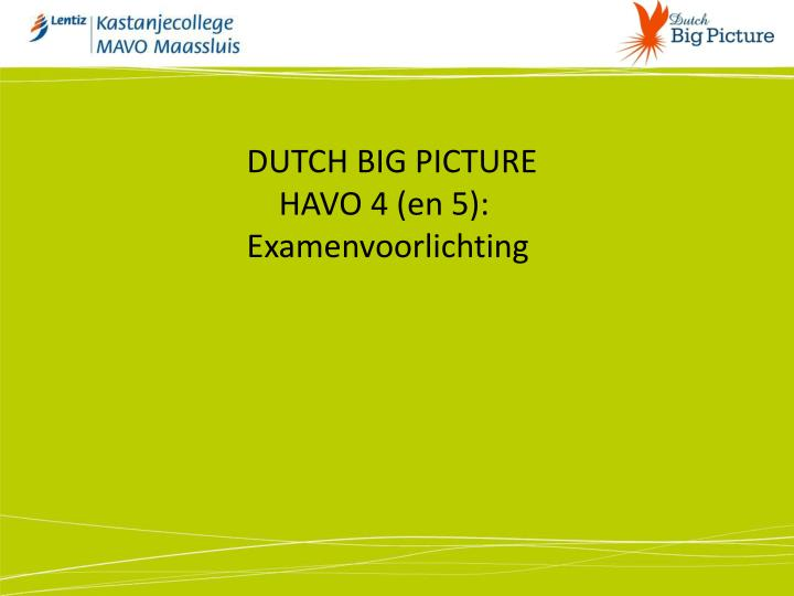 DUTCH BIG PICTURE