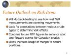 future outlook on risk items