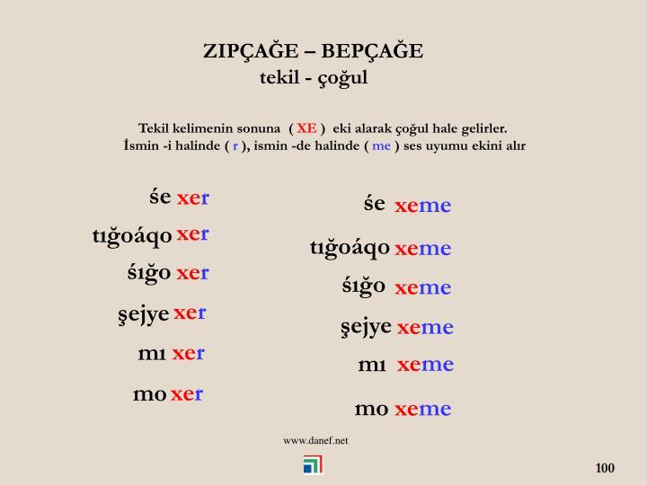 ZIPAE  BEPAE
