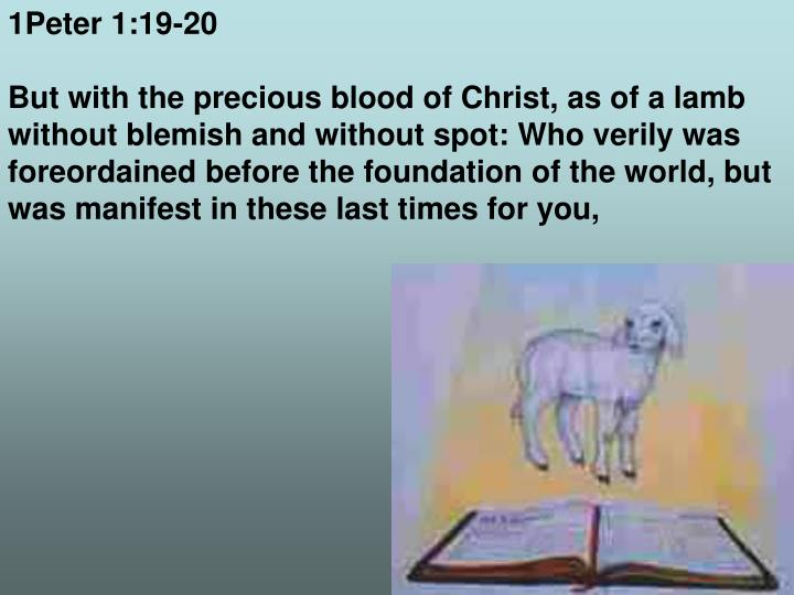 1Peter 1:19-20