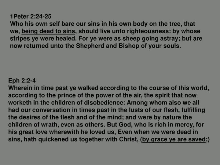 1Peter 2:24-25