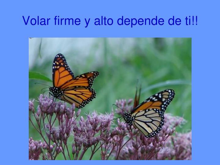 Volar firme y alto depende de ti!!