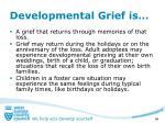 developmental grief is