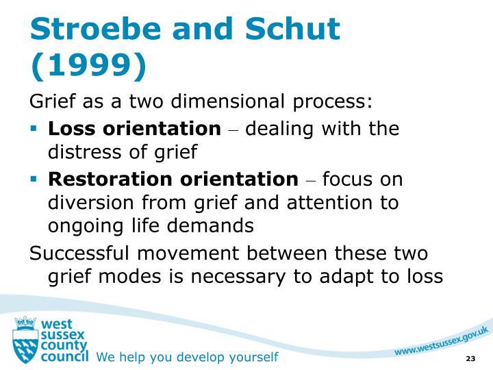 Stroebe and Schut (1999)