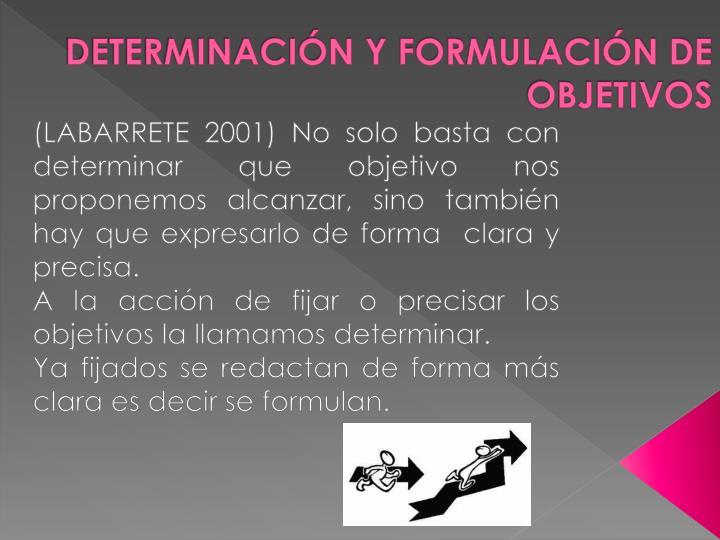 DETERMINACIÓN Y FORMULACIÓN DE OBJETIVOS