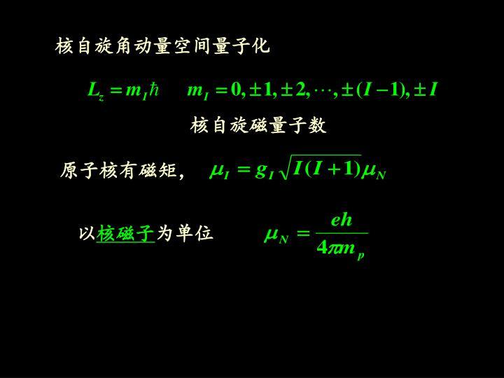 核自旋角动量空间量子化