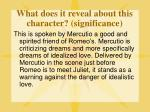 what does it reveal about this character significance