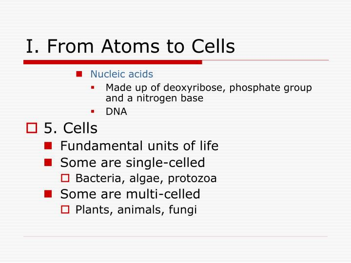 I. From Atoms to Cells