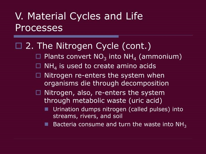 V. Material Cycles and Life Processes