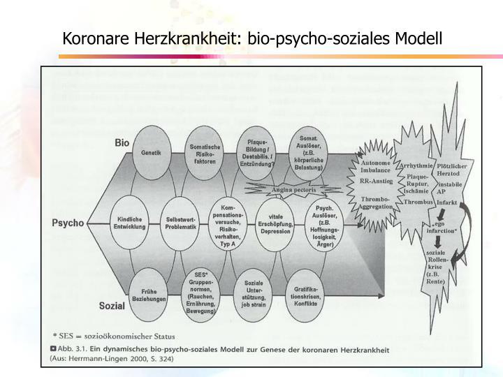 Koronare Herzkrankheit: bio-psycho-soziales Modell