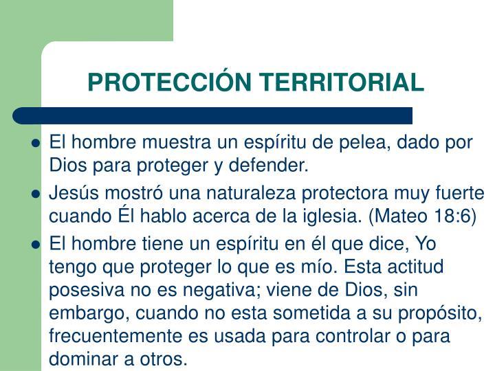PROTECCIÓN TERRITORIAL