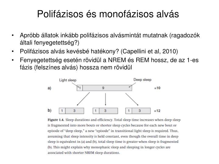 Polifázisos és monofázisos alvás