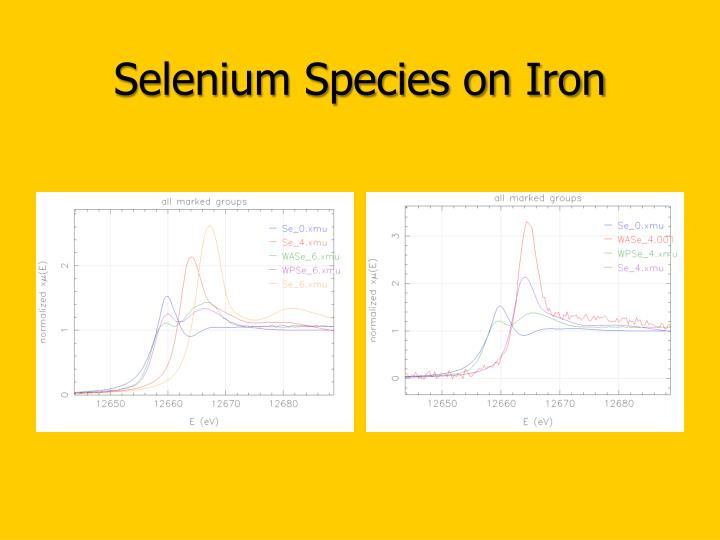 Selenium Species on Iron