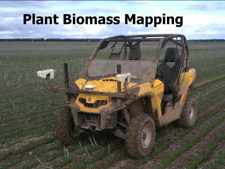 Plant Biomass Mapping