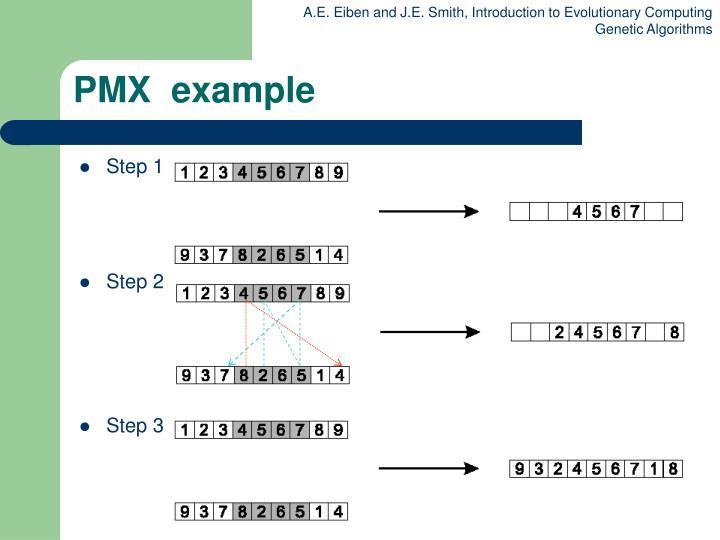PMX  example
