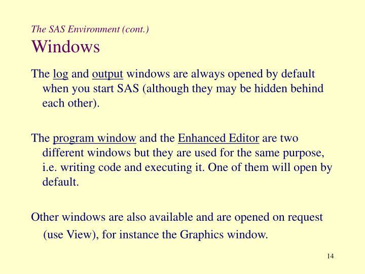 The SAS Environment (cont.)