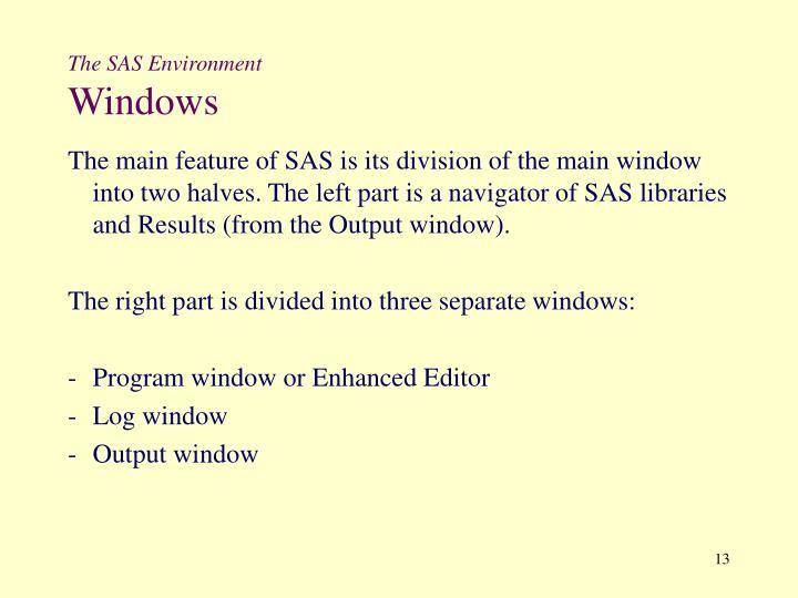 The SAS Environment