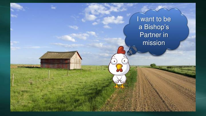 I want to be a Bishop's Partner in mission