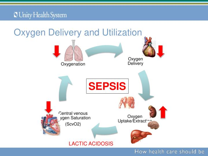Oxygen Delivery and Utilization