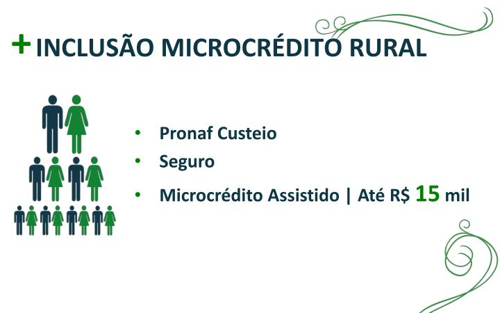 INCLUSÃO MICROCRÉDITO RURAL