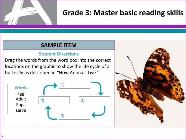 Grade 3: Master basic reading skills