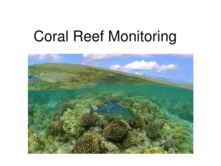 Coral Reef Monitoring