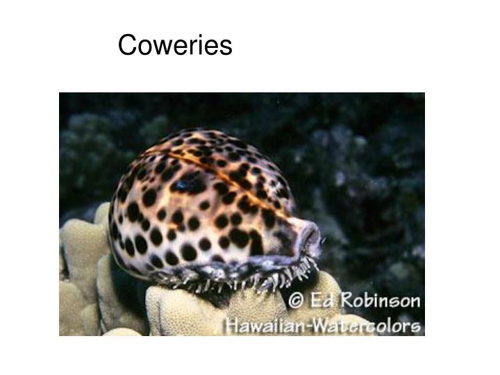 Coweries