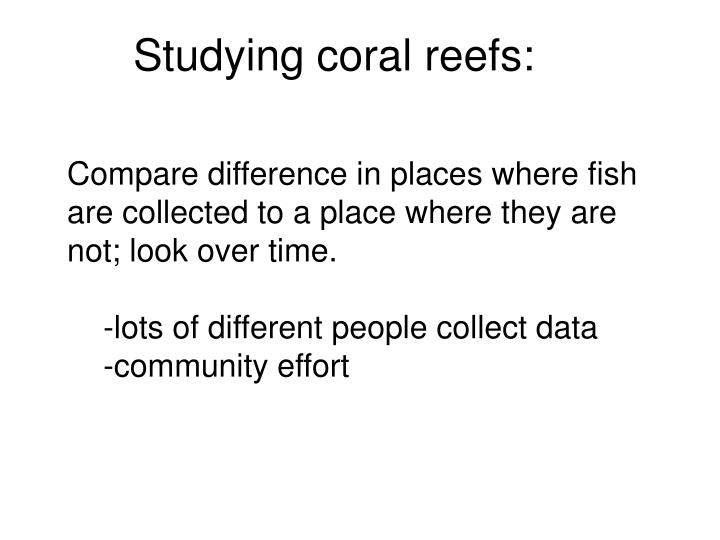 Studying coral reefs: