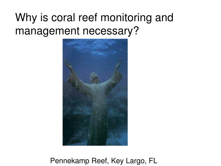 Why is coral reef monitoring and management necessary?