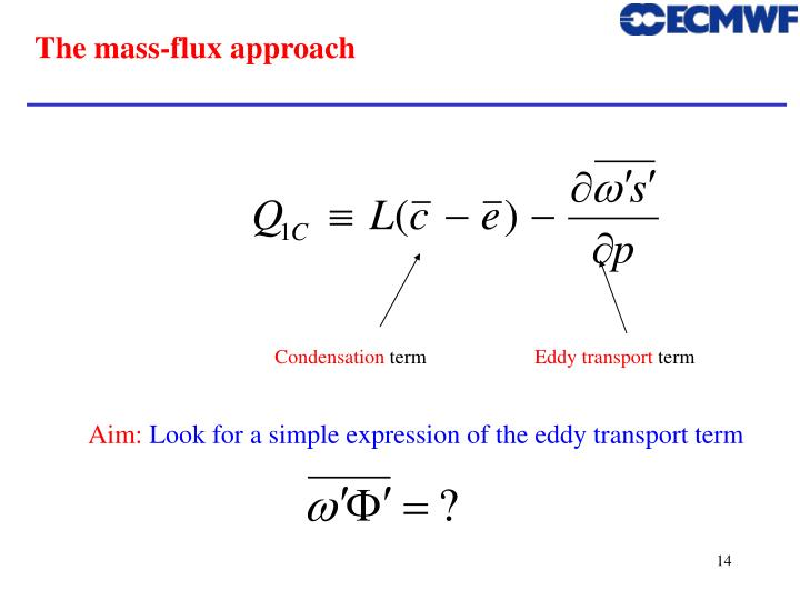 The mass-flux approach