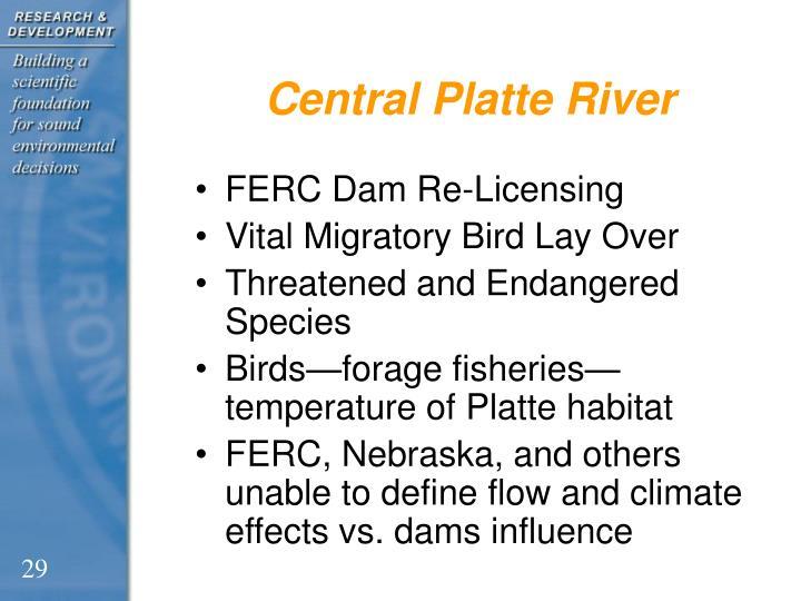 Central Platte River