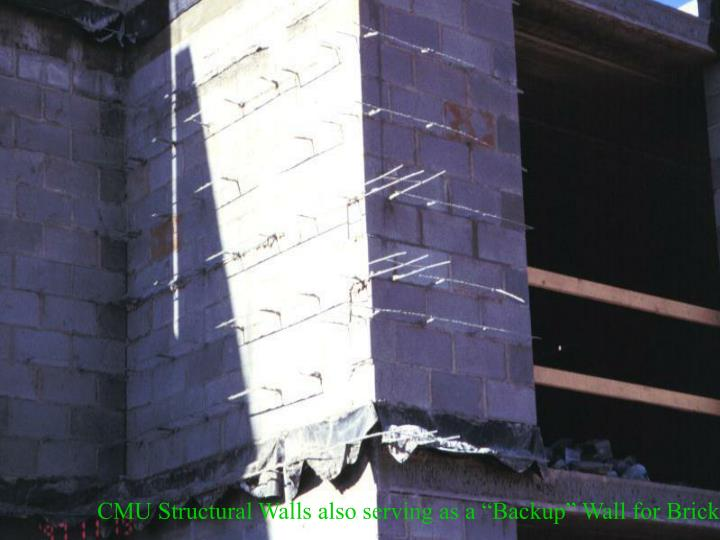 "CMU Structural Walls also serving as a ""Backup"" Wall for Brick Facing"