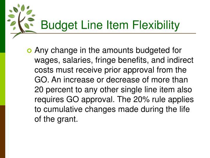 Budget Line Item Flexibility