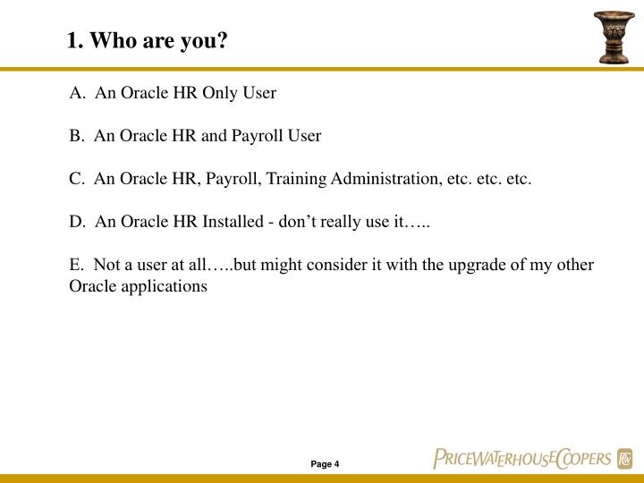 A.  An Oracle HR Only User