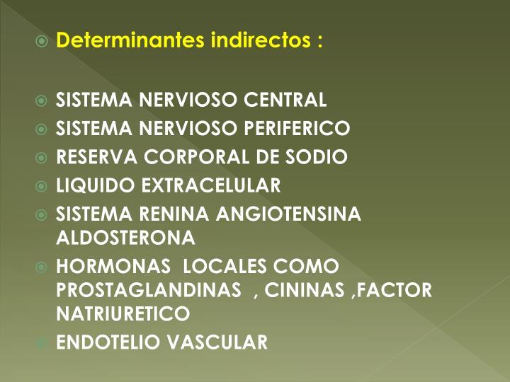 Determinantes indirectos :