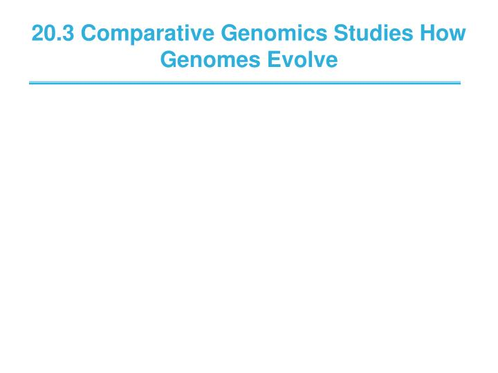 20.3 Comparative Genomics Studies How Genomes Evolve