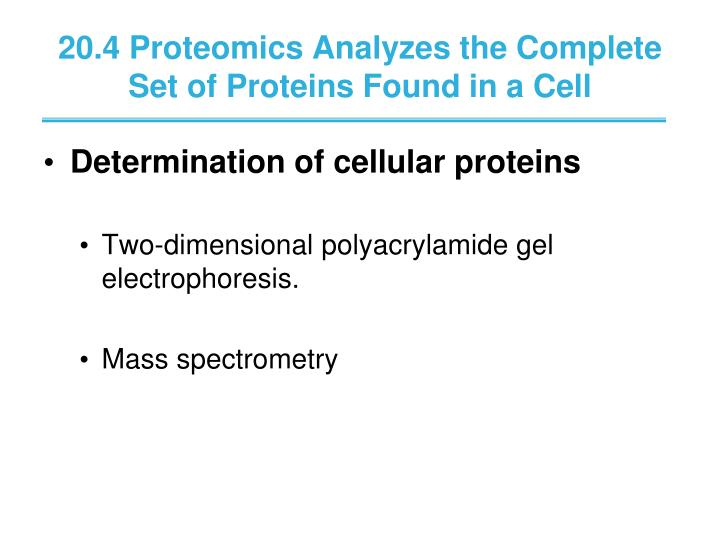 20.4 Proteomics Analyzes the Complete Set of Proteins Found in a Cell
