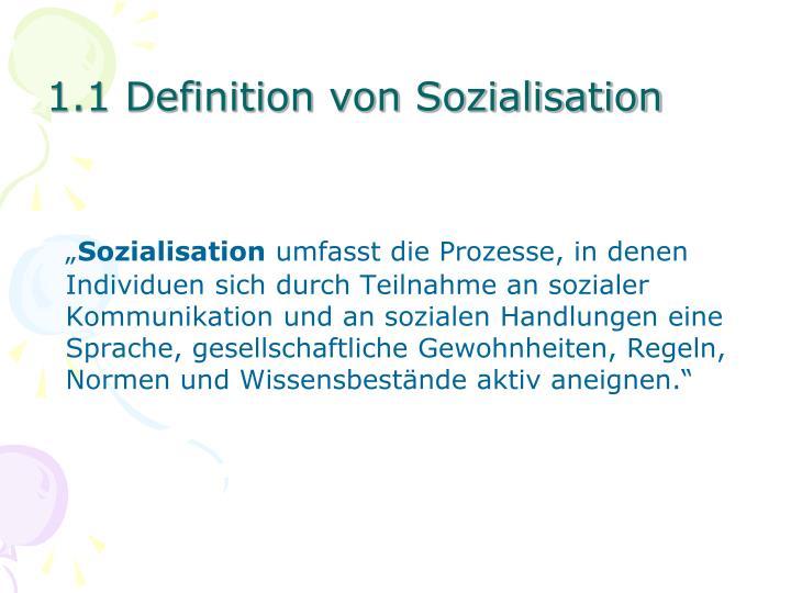 1.1 Definition von Sozialisation