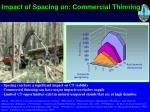 impact of spacing on commercial thinning