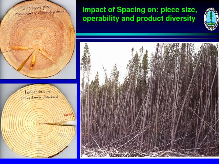 Impact of Spacing on: piece size,