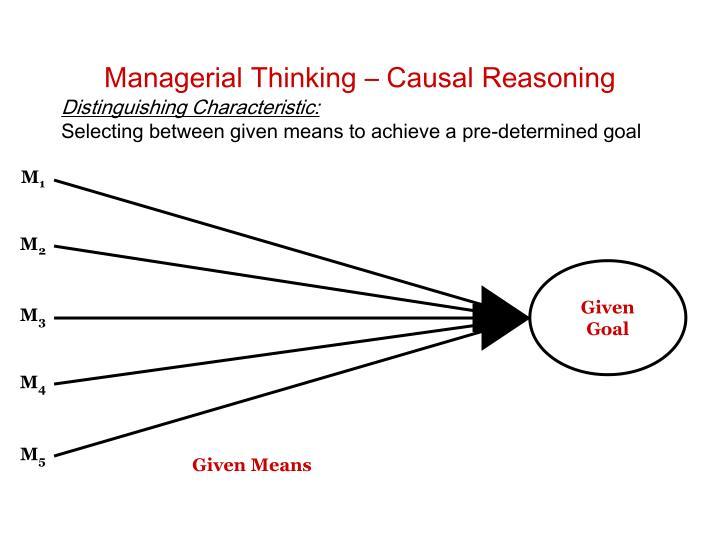 Managerial Thinking – Causal Reasoning