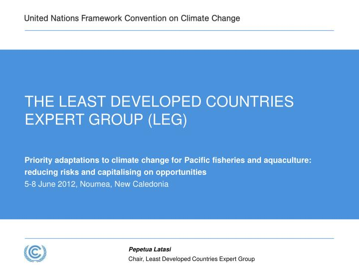 THE LEAST DEVELOPED COUNTRIES EXPERT GROUP (LEG)