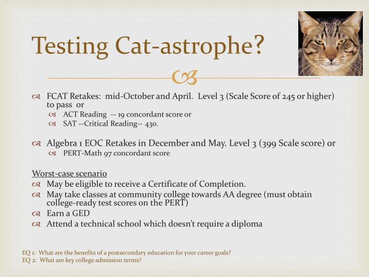 Testing Cat-