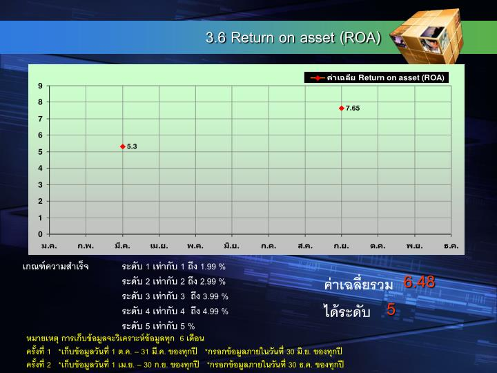 3.6 Return on asset (ROA)