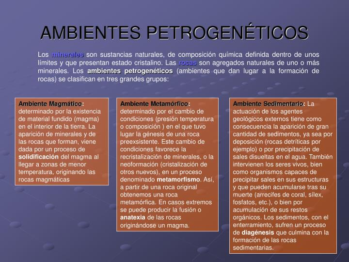 AMBIENTES PETROGENÉTICOS