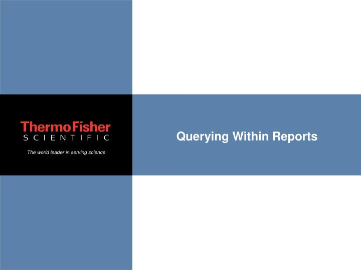 Querying Within Reports