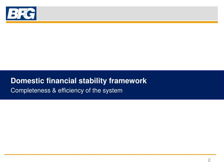 Domestic financial stability framework