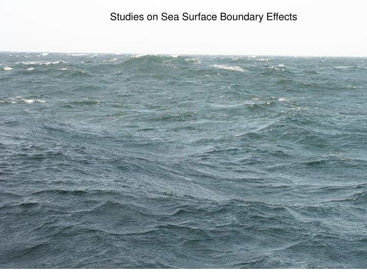 Studies on Sea Surface Boundary Effects
