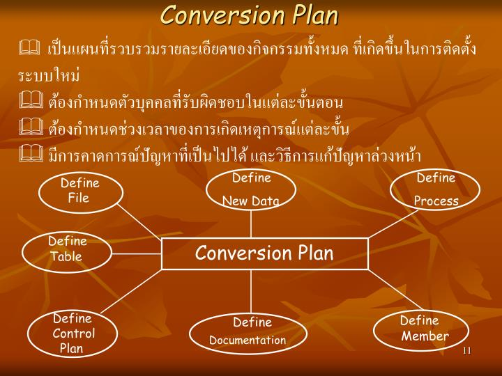 Conversion Plan
